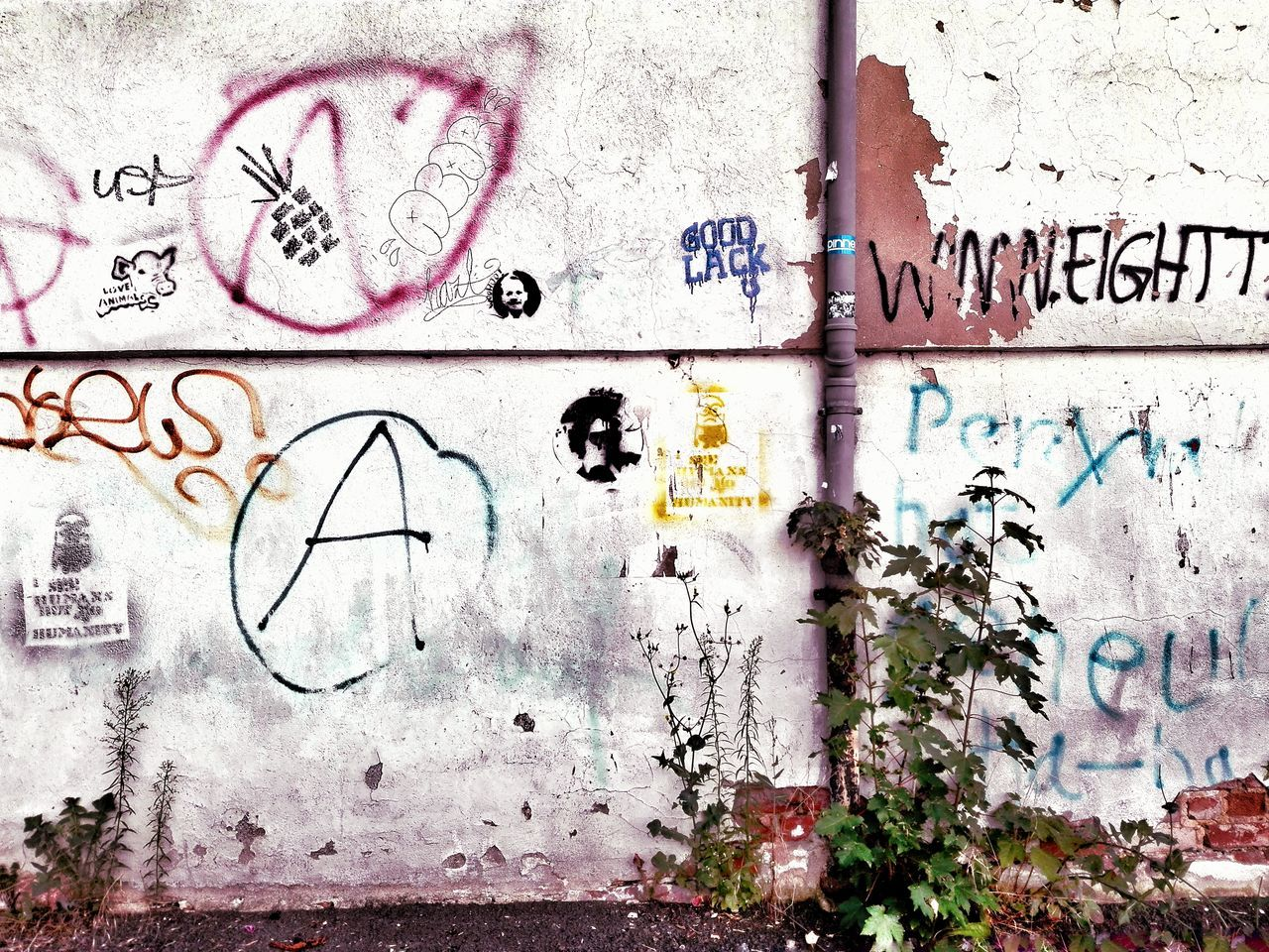 Graffiti Wall - Building Feature Art And Craft Spray Paint Paint Text Day Street Art Full Frame Communication Backgrounds Sketch No People Drawing Outdoors Close-up