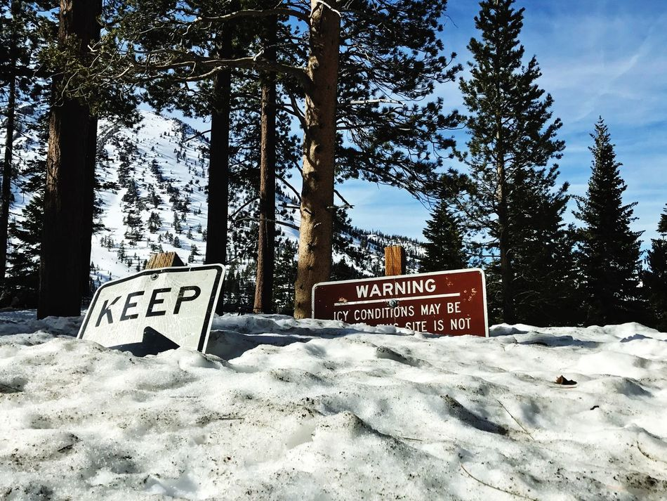 Text Communication Western Script Snow Tree Winter Nature Cold Temperature Warning Sign Tranquility Speed Limit Sign Sky Road Sign Beauty In Nature Scenics Day No People Outdoors Roadtrip