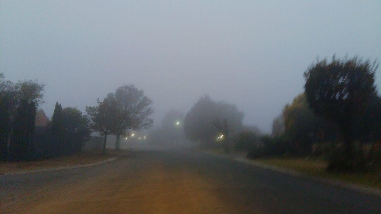 Misty Morning Misty Day Misty Sunrise Misty Road Misty Sky Misty Misty Everything Foggy Foggy Morning Foggy Day Foggy Weather Fog OH Fog!! 😆😅😂 Fog In The Trees Foggy Landscape Foggy Everything