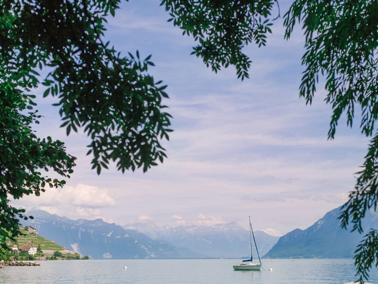 The Great Outdoors - 2017 EyeEm Awards Mountain Water Sky Tree Nature Beauty In Nature Scenics Cloud - Sky Nautical Vessel Sea Transportation Outdoors Mode Of Transport Tranquility Mountain Range Day No People Travel Destinations Sailboat Branch Switzerland Lake Leman