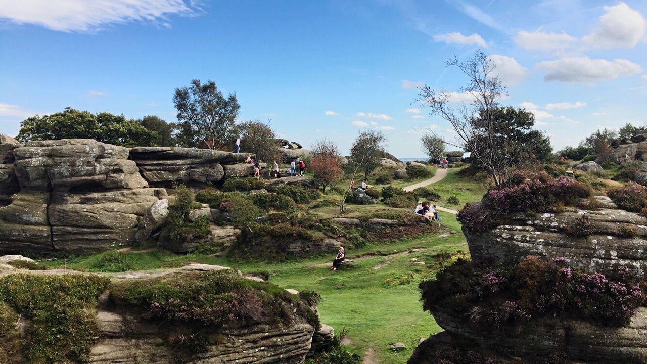 Brimham Rocks. Beauty In Nature Rocks Trees Trees And Sky Landscape Built Structure Blue Sky Summer Adventure Road Trip Paths Trees And Nature