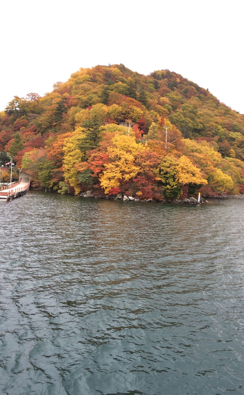 すごく綺麗な紅葉だった😊💓初遊覧船! Autumn Colors Noedit Lake Beautiful