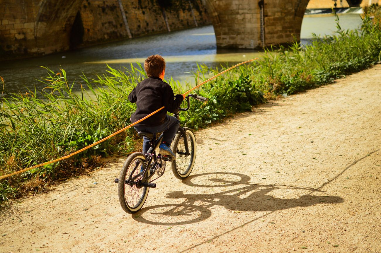 The City Light Bicycle Cycling Transportation Rear View One Person Riding Outdoors Day People Quixote Bridge
