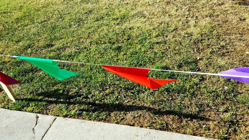 Lets Go! Flags High Angle View Day Sunlight Outdoors No People Red Green Reflections And Shadows Lines Minimalism Race EyeEm Gallery Grass Nature Simple Moment Eye4photography  Pattern EyeEm Best Shots Copy Space Still Life Photography Meditation Check This Out EyeEm Diversity