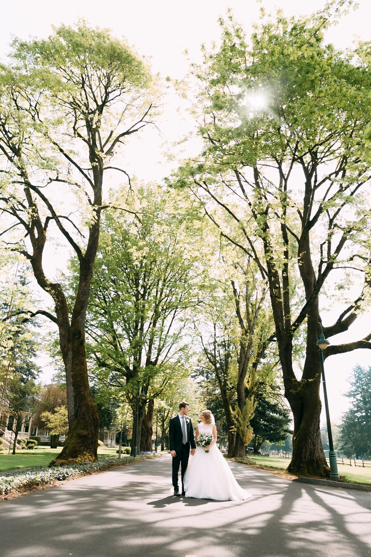 Capturing these two love birds. Tree Two People Full Length Walking Rear View Love Adult Togetherness Road Couple - Relationship Day Men Women Senior Men Transportation People Senior Women Adults Only Outdoors Bonding
