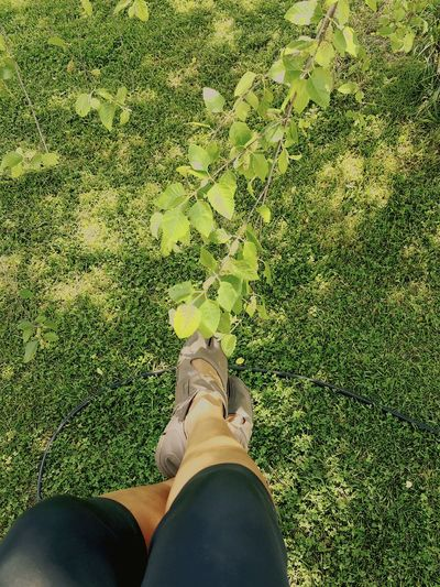 Ayahdoesit Greengrass Lawmoment  Frontporch Country Life