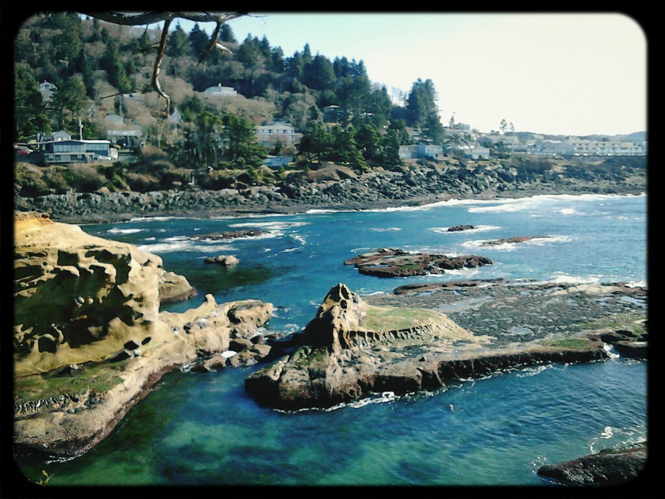 the view of the cove in Depoe Bay