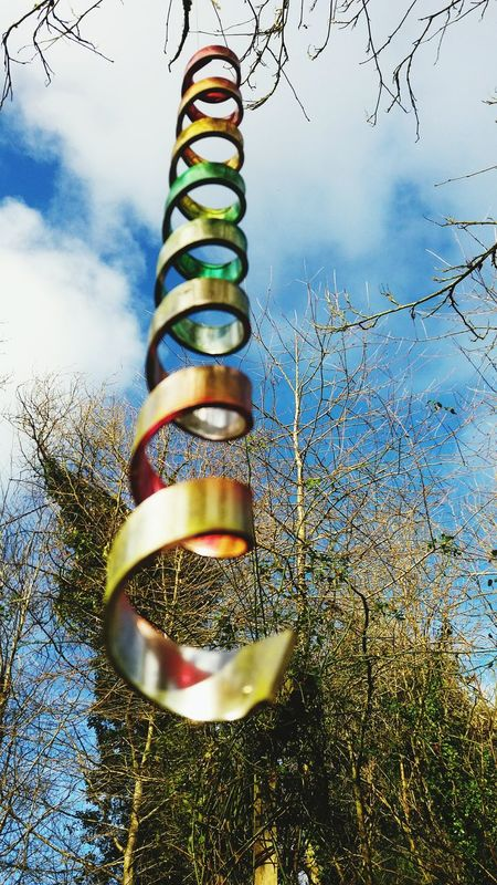 Spirals Sky And Clouds Skylovers Trees And Sky Trees Garden Photography Sunshine Colour Bright Colors Eye4photography  EyeEm Nature Lover Rainbow Eyecatchingpicture Everything In Its Place Nature Abstract Fine Art Ireland Still Life Abstract Photography