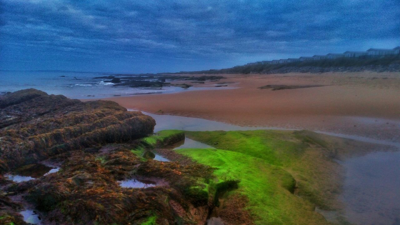 Algae Glowing Colourful Beach Shoreline Scotland Camping Nature_collection