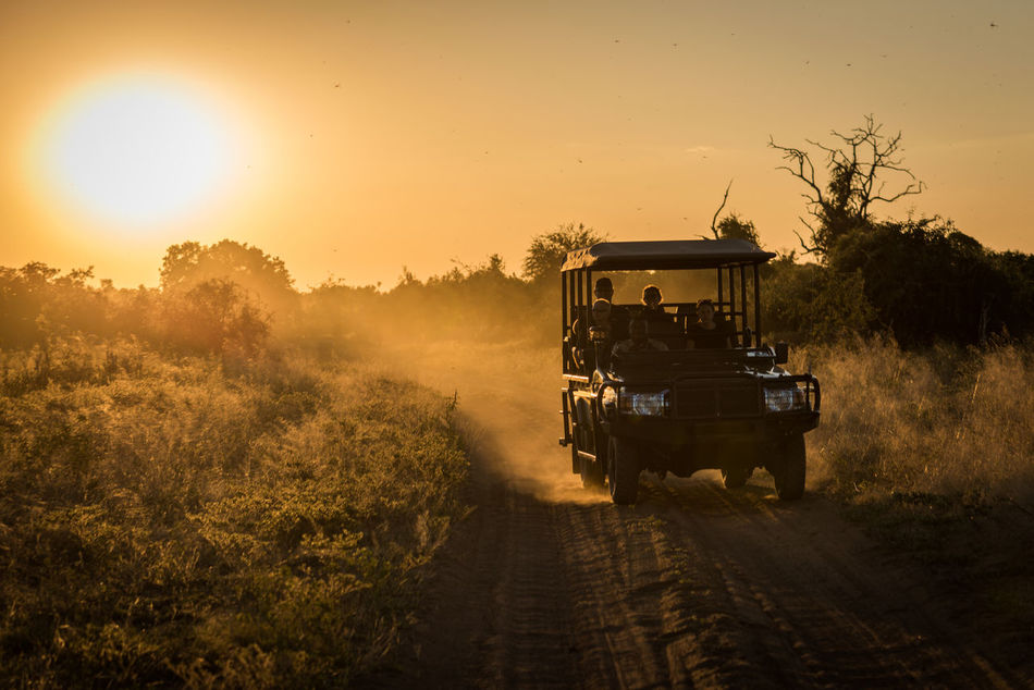 Beautiful stock photos of lkw, 4X4, Adventure, Dirt Road, Discovery