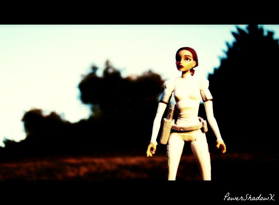 Padmé Padmé Amidala Portrait Sky Star Wars Toy Toy Photography Toycommunity Toycrewbuddies Toygroup_alliance Toyphotography Toyunion Trees