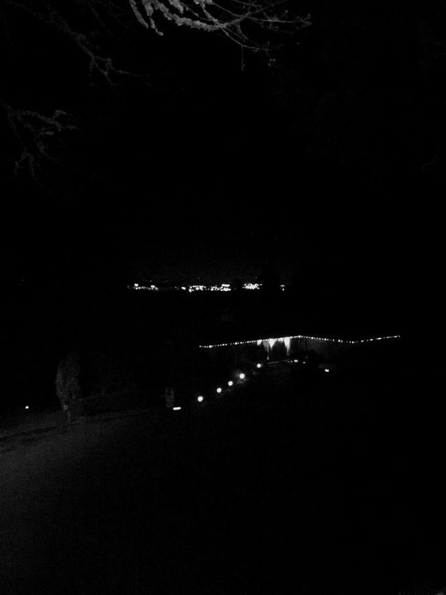 City lights Lake Oswego