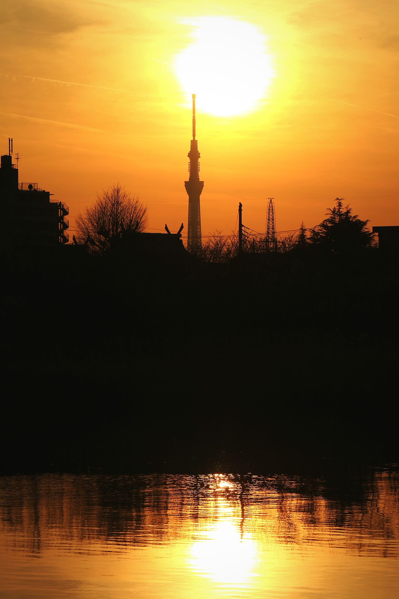 Sunset Tower Sky Silhouette Reflection Tokyo Skytree Tokyoskytree Japan Sunset_collection Gradation Orangesky Sunsets Dramatic Sky Silhouette Orange Color Sun Water River Trees And Sky