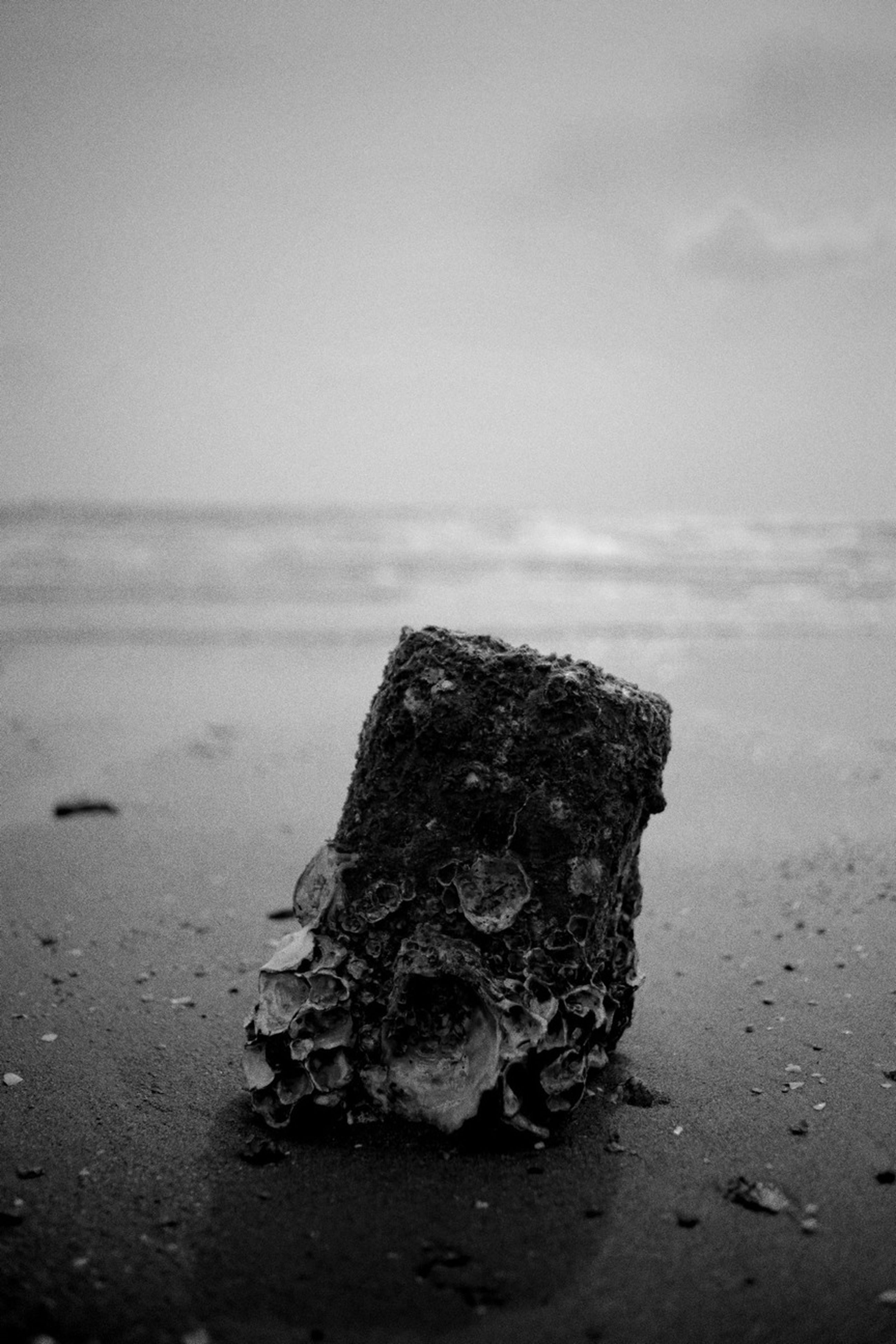 water, sea, horizon over water, beach, shore, tranquility, abandoned, nature, sky, rock - object, damaged, outdoors, no people, tranquil scene, close-up, day, sand, beauty in nature, old, deterioration