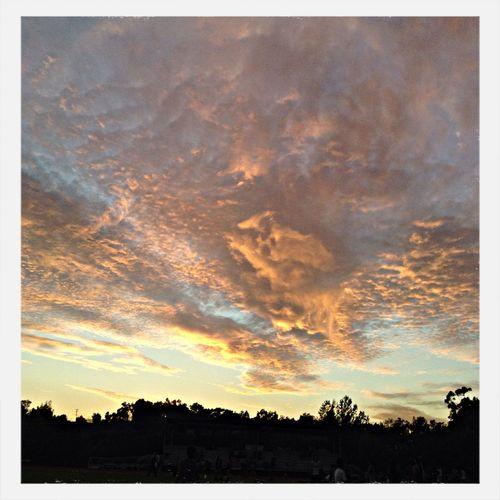 Sun Set Cali Livin' ??