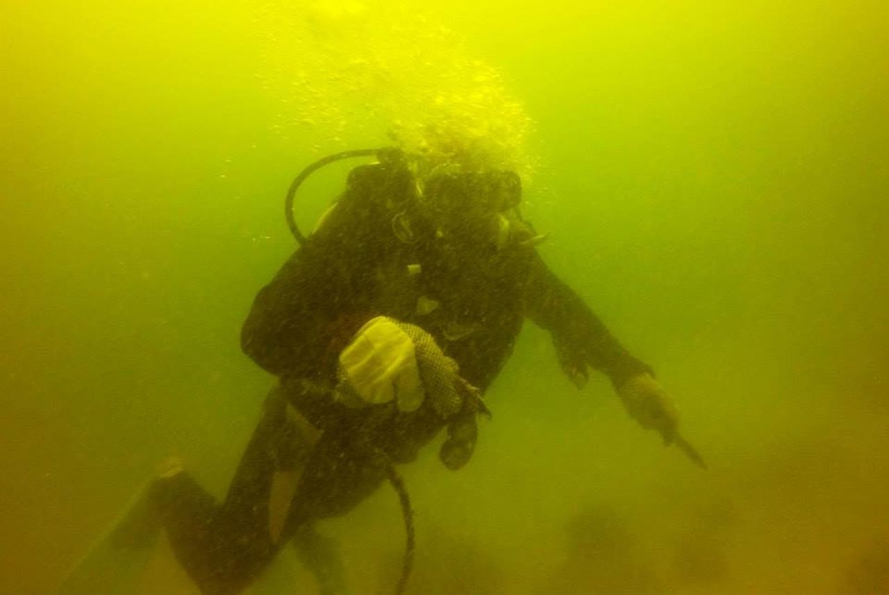 underwater, undersea, swimming, sea, scuba diving, one person, yellow, adventure, water, exploration, sea life, animals in the wild, animal themes, real people, full length, extreme sports, nature, day, people