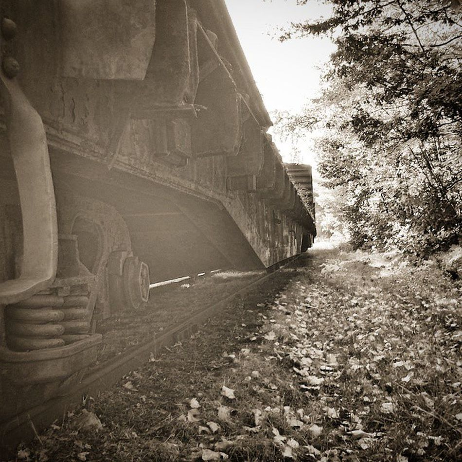 Oldtrain Whyisithere Mustbeastory Abandoned train