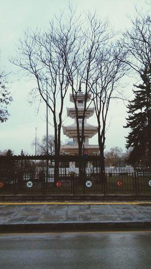 Korean Seoul Korea Anıt Anit Tarih  Ankara Turkey No People Haftasonu Weekend Tree Outdoors City Sky Day