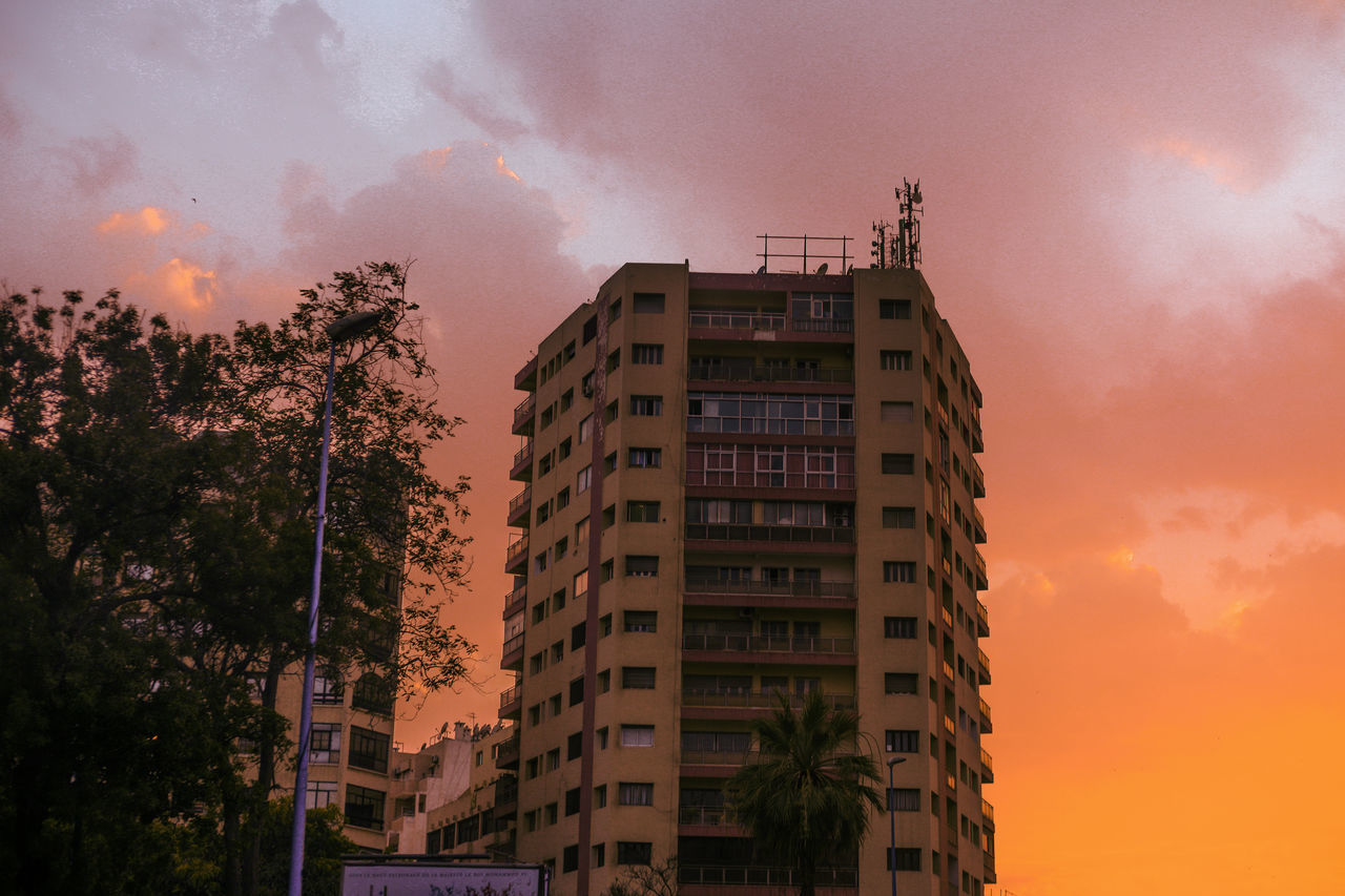 architecture, building exterior, sky, tree, built structure, no people, sunset, growth, low angle view, skyscraper, city, outdoors, nature, residential, day