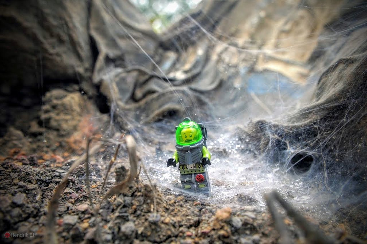 LEGO Legophotography Lego Adventures Toycommunity Toy Photography Toyeyeem Toyphotography Toys EyeEm Minfigures