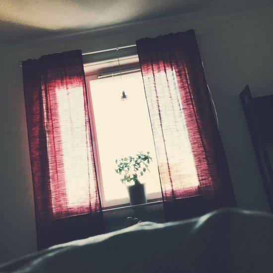 Overexposure. Window Indoors  No People Lo-fi Day