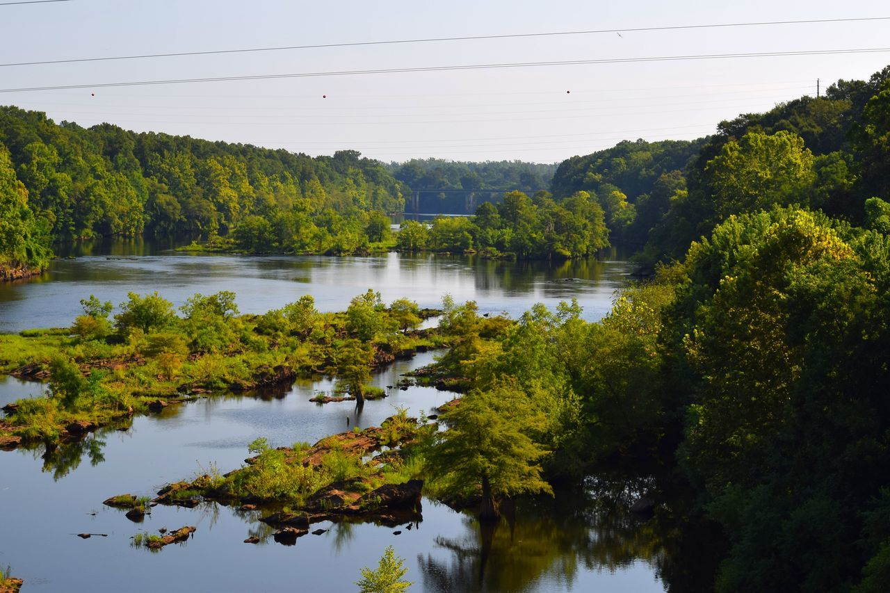 Coosa River in Wetumpka, Alabama Alabama Beauty In Nature Green Color Growth Idyllic Lake Lush Foliage Nature Outdoor Alabama Outdoor Photography Outdoors Reflection Scenics Tranquil Scene Tranquility Tree Water Colour Of Life