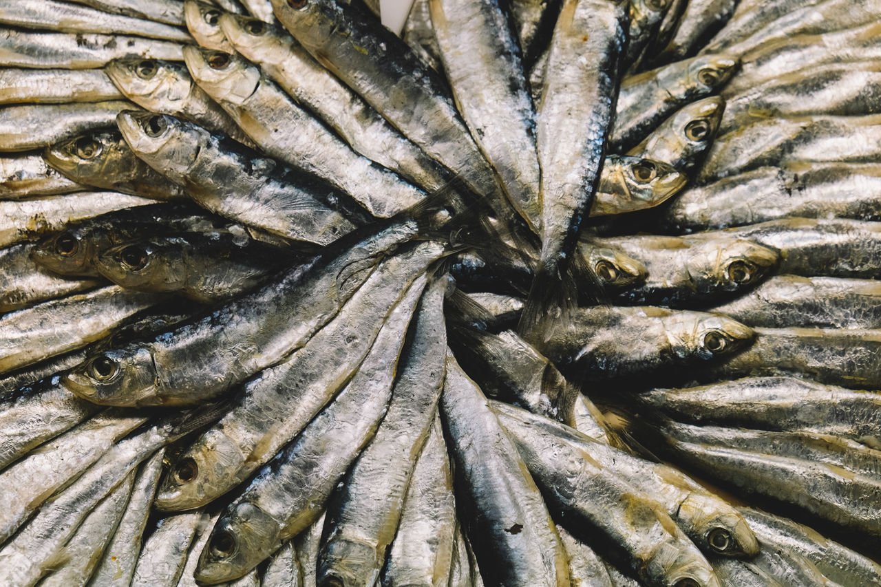 Beautiful stock photos of fish, Abundance, Arrangement, Backgrounds, Cambrils