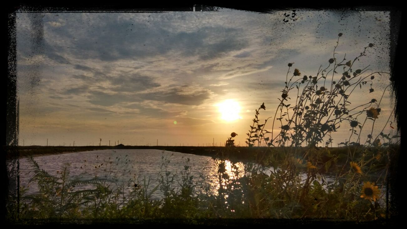 i miss u so much. Sea Enjoying The Sunset
