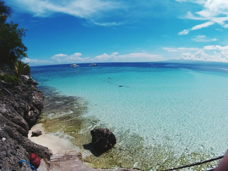 Oslob OslobParadise Beach Sea Horizon Over Water Water Sunlight Day Sky Beauty In Nature Travel Destinations Swimming Tranquility Vacations Philippines UnderSea