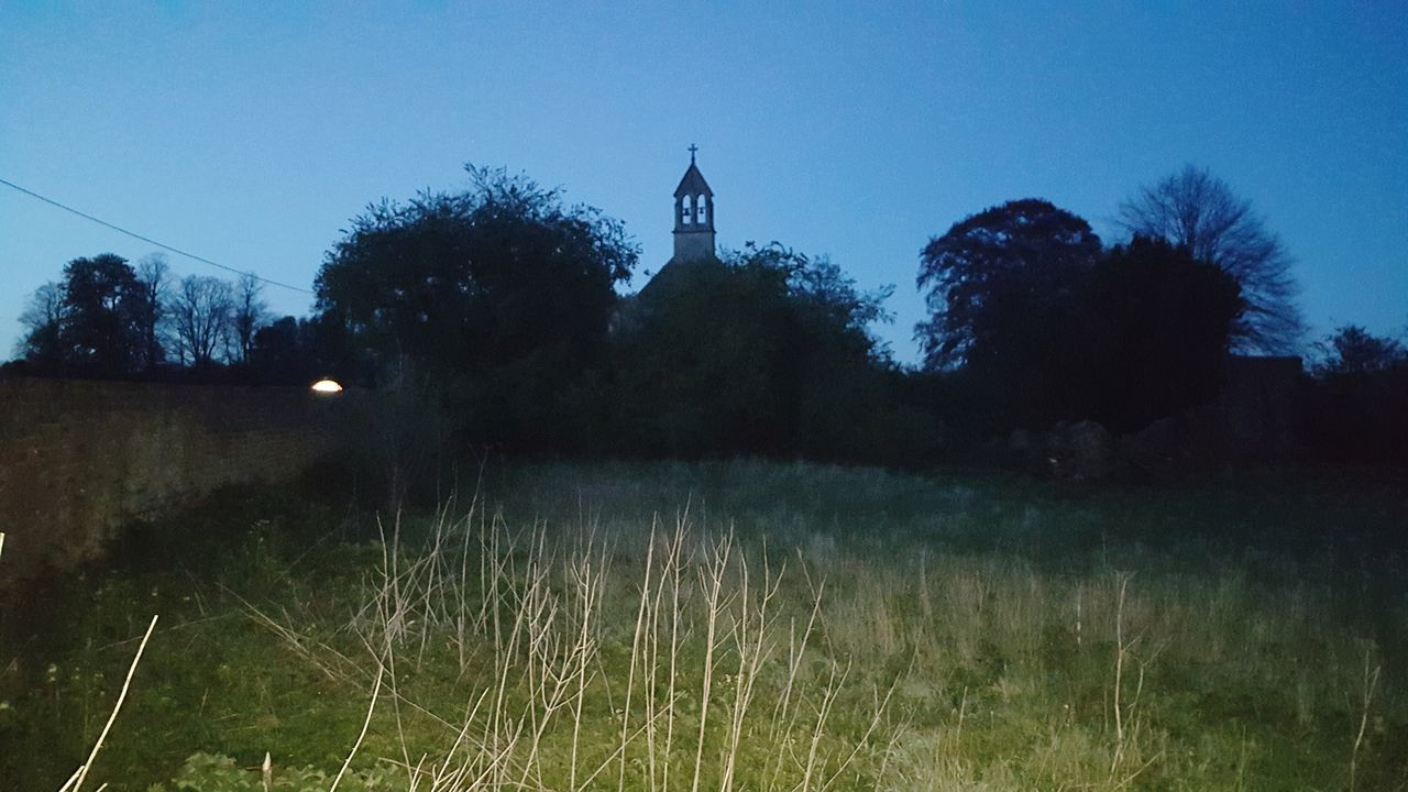 Tree Grass No People Outdoors Night Clear Sky Sky Nature Architecture Astronomy Church EyeEmNewHere