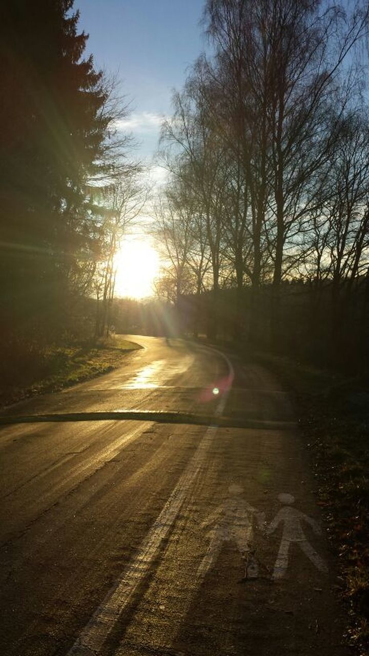 road, no people, tree, sunlight, the way forward, nature, sun, outdoors, transportation, tranquility, scenics, sunset, beauty in nature, sky, bare tree, day
