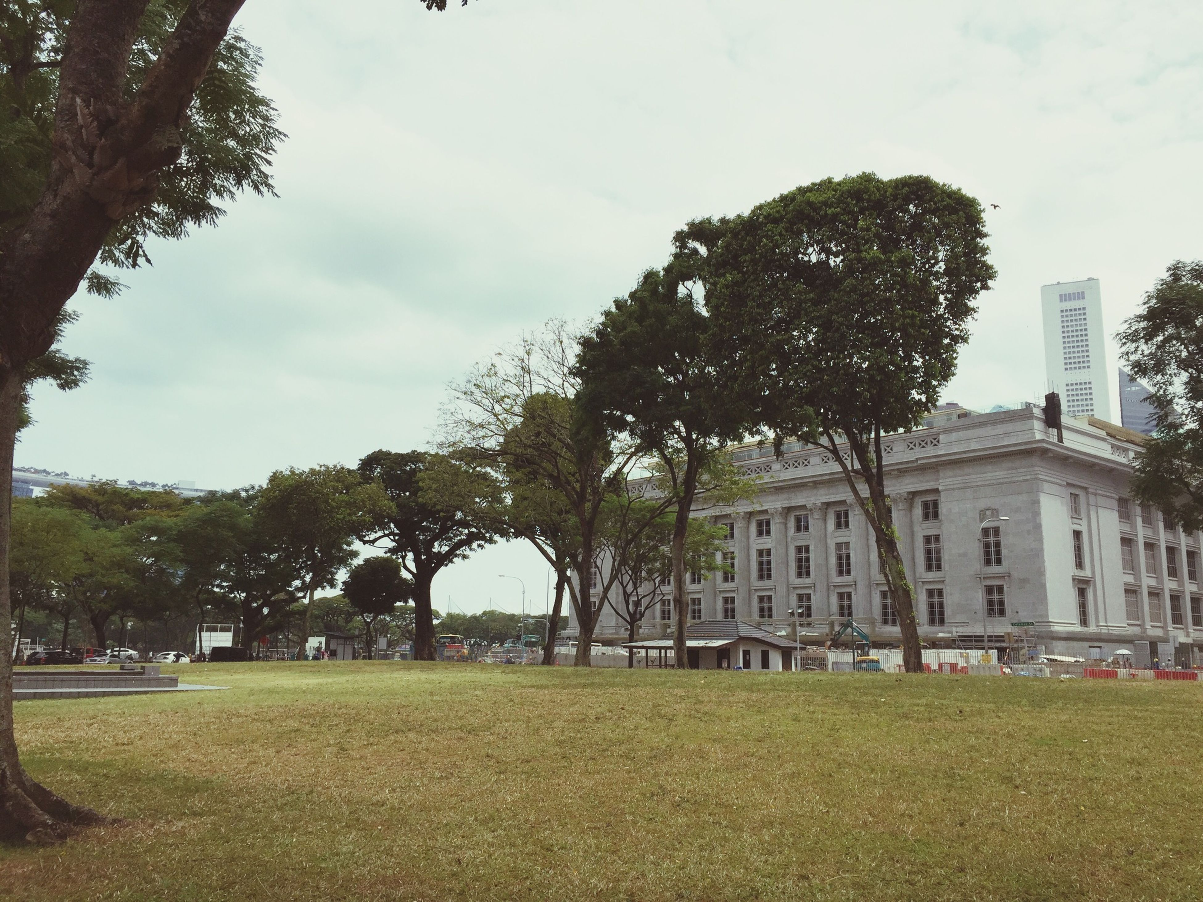 tree, architecture, building exterior, built structure, grass, sky, lawn, green color, park - man made space, cloud - sky, growth, incidental people, day, cloud, outdoors, city, facade, nature, travel destinations, building