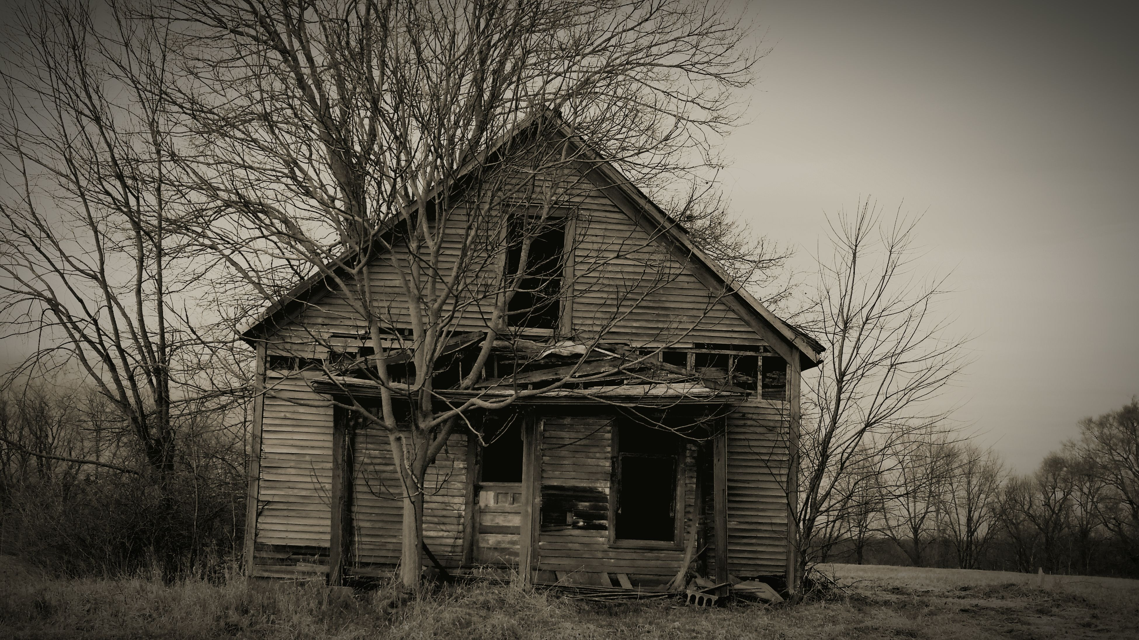 architecture, built structure, building exterior, abandoned, bare tree, old, house, tree, damaged, obsolete, clear sky, low angle view, run-down, deterioration, sky, day, outdoors, no people, residential structure, branch