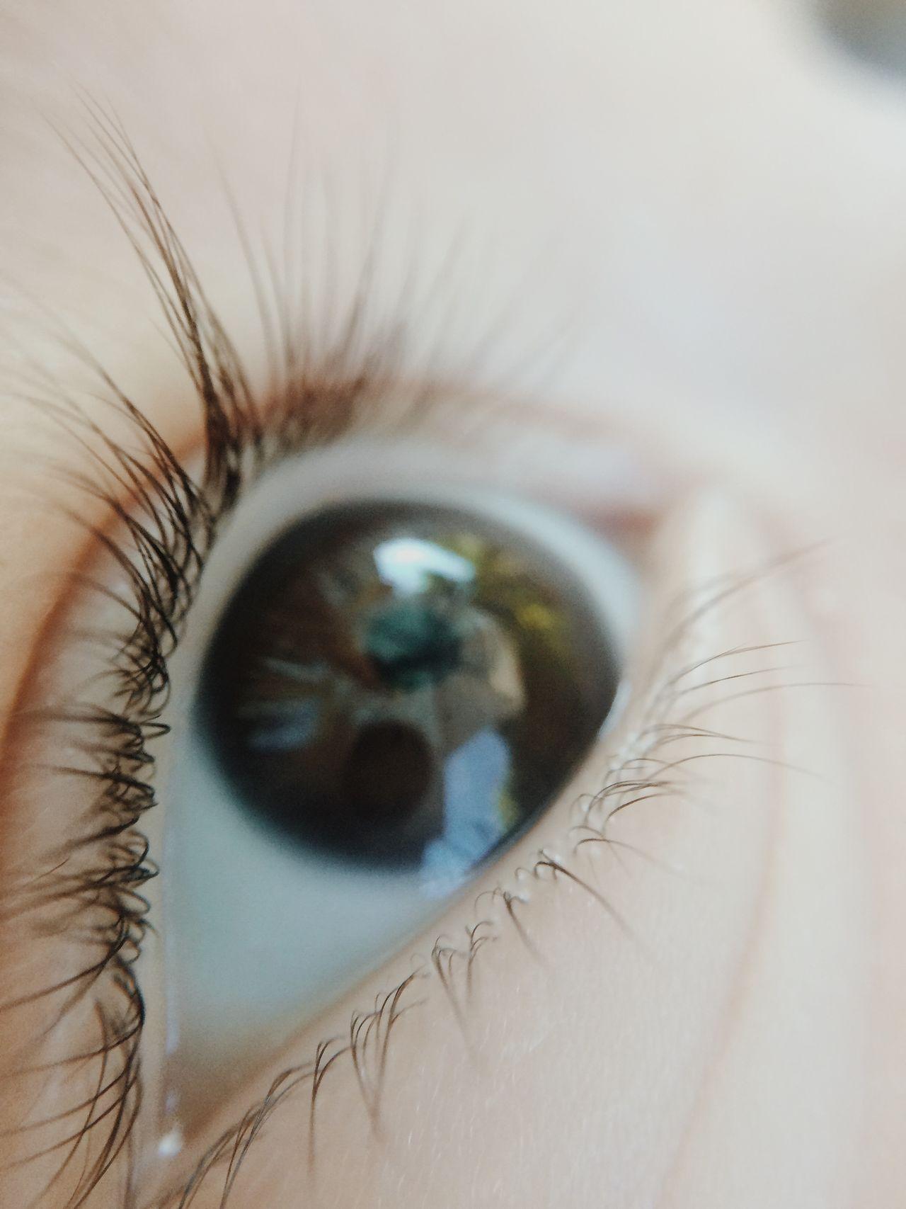 Beautiful stock photos of eyes, Baby Boys, Babyhood, Close-Up, Eyeball