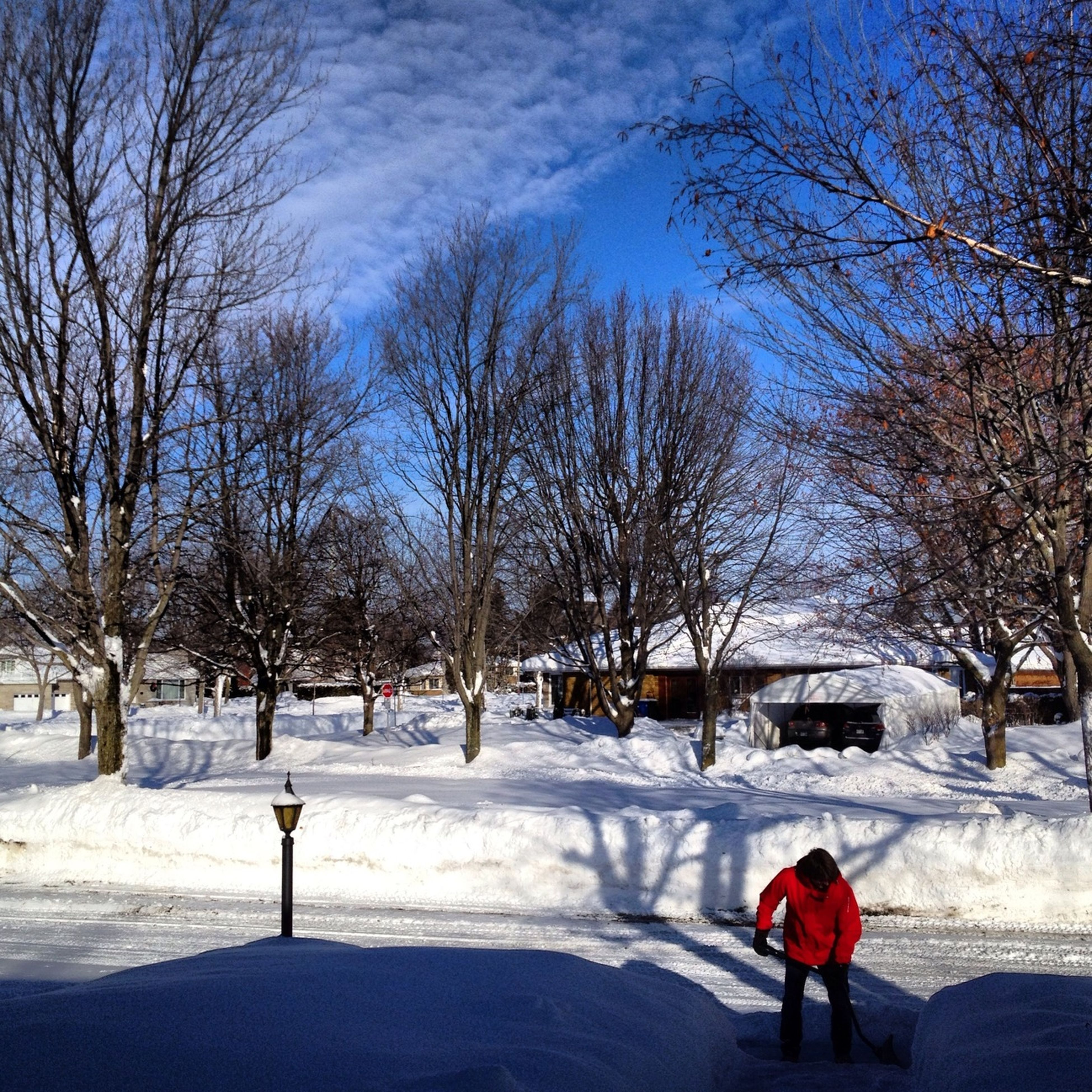 winter, bare tree, snow, cold temperature, tree, season, weather, lifestyles, leisure activity, walking, rear view, men, sky, full length, street, nature, road, branch
