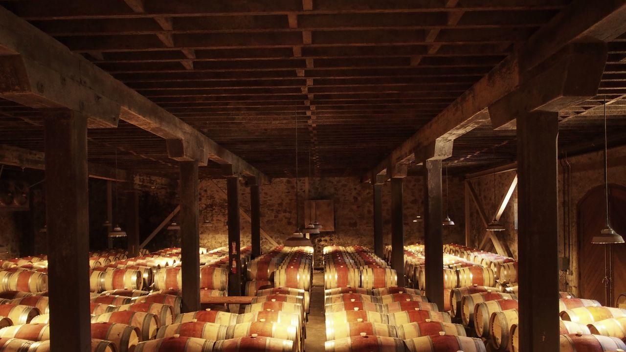 Beautiful stock photos of wine, Abundance, Architectural Column, Arrangement, Barrel