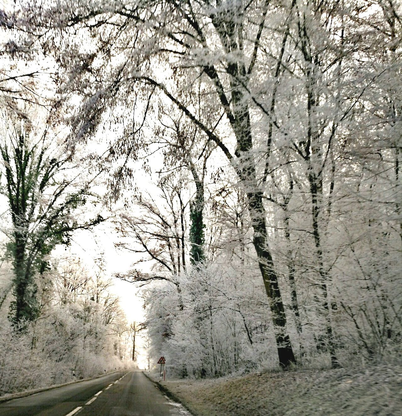 Nature Beauty In Nature Road Cold Weather Cold Days Snow Forest No People EyeEmNewHere Nicepic Awesome Nature Snow Cold Temperature Idyllic Winter Street Awe Cold Winter ❄⛄ Outdoors