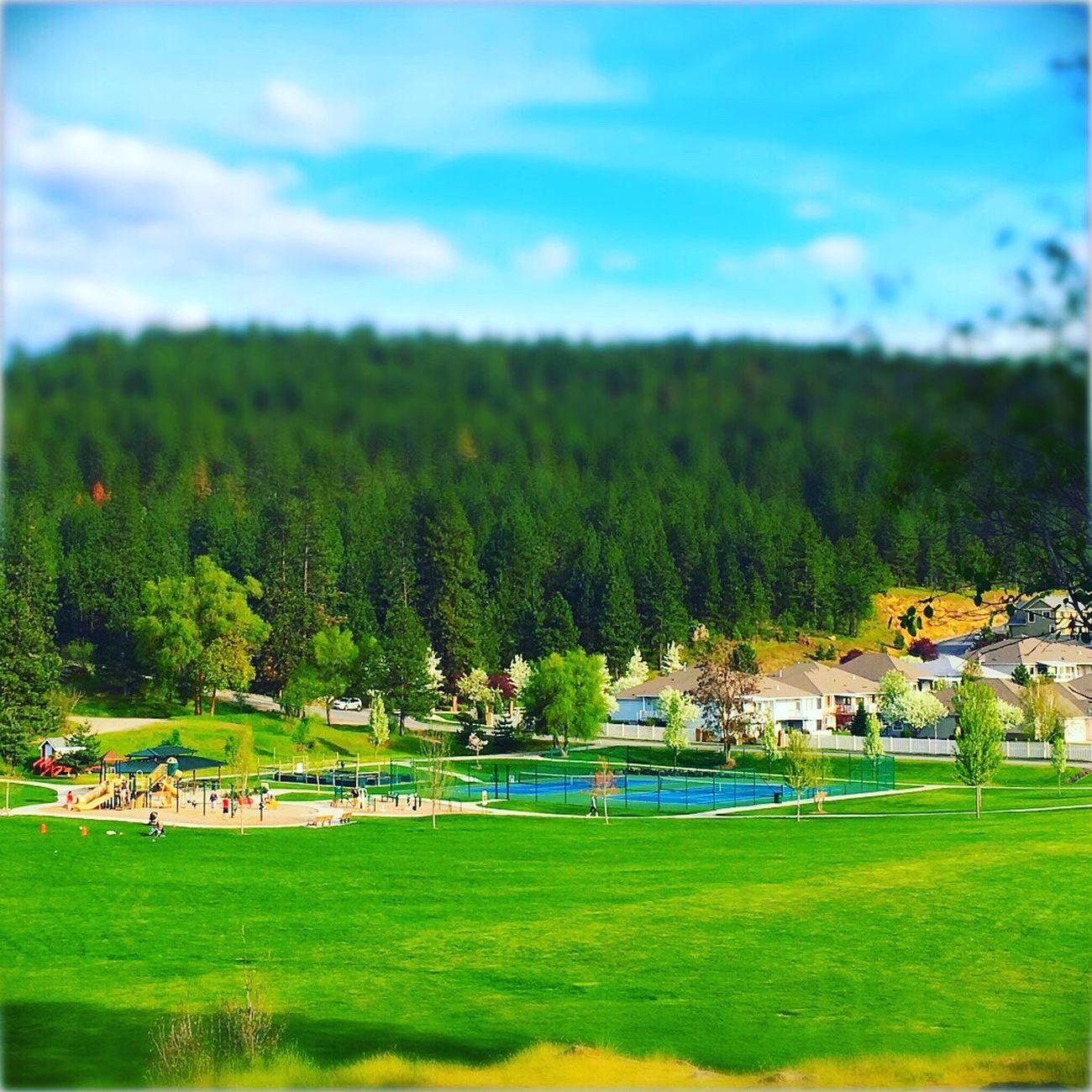 Sky Landscape Outdoors Nature Washington State Spokane Pacific Northwest  Park PNW Spokane Wa Spokane Valley Inlandempire First Eyeem Photo