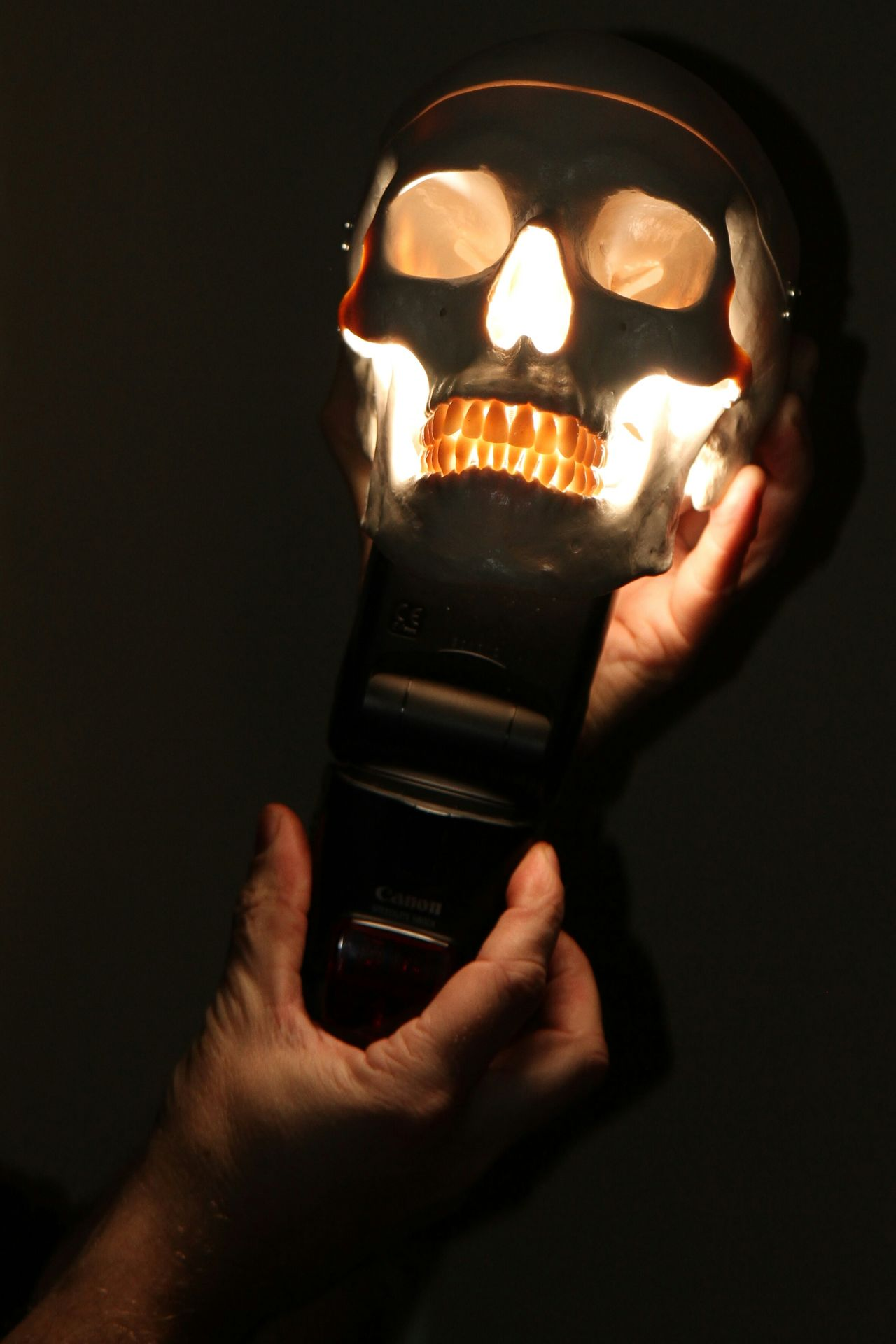 Black Background Close-up Fashion Focus On Foreground Happy Halloween Hobbies Holding Human Body Part Human Finger Human Hand Indoors  Lifestyles Men Music Part Of Real People Serious Skull Studio Shot Technology Women