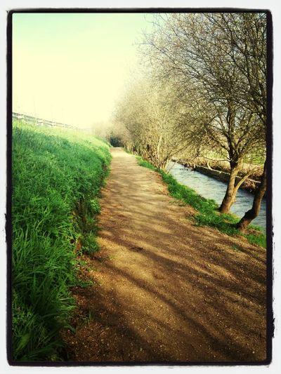 Caminando Entrenando Para El Camino De Santiago