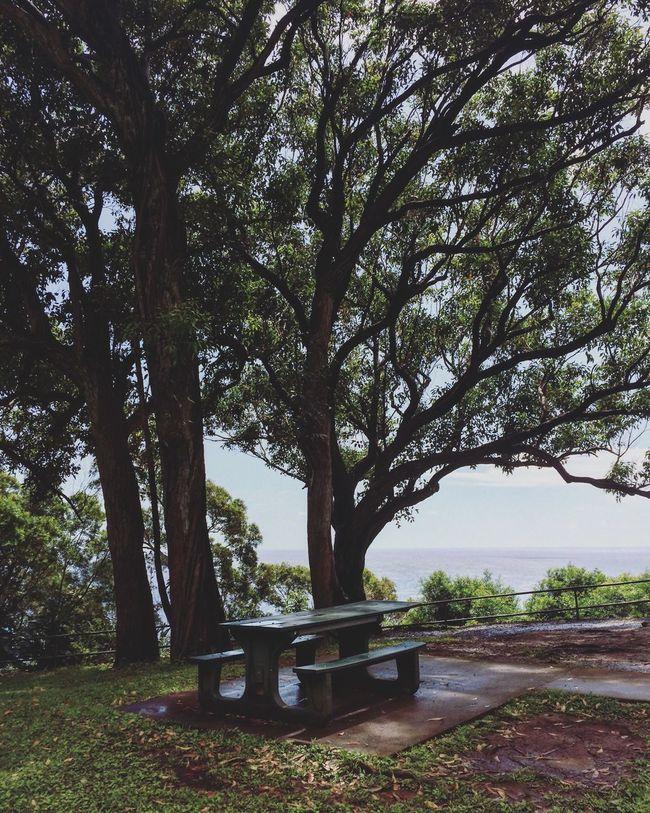 Hawaii Maui Hawaii Mauiphotography OverviewPoint Hawaiishots Hawaii ❤✌ Hawaiistagram HAWAII Island Maui Taking Photos Hello World Check This Out Hawaiian Islands Hawaiian Beauty