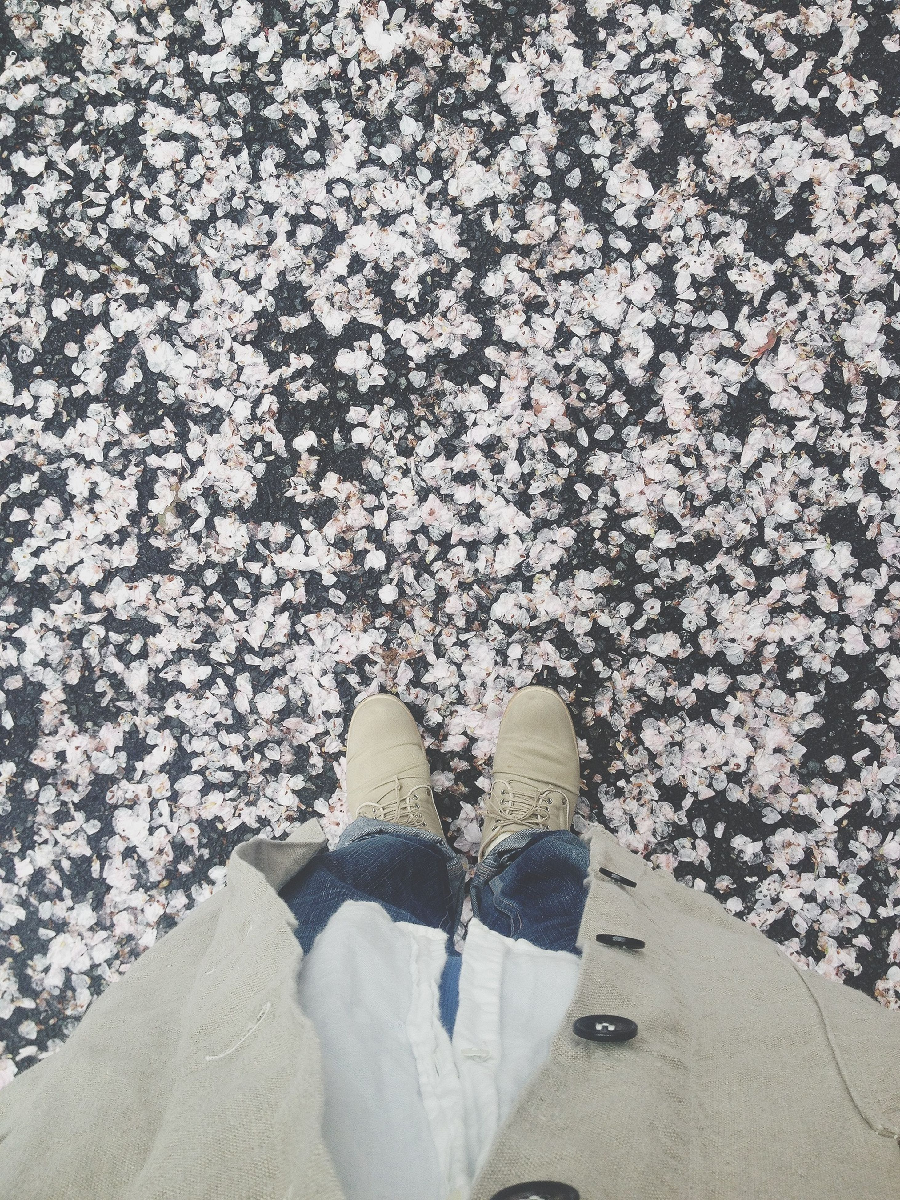 low section, person, shoe, high angle view, personal perspective, standing, footwear, lifestyles, human foot, outdoors, nature, day, leisure activity, directly above, sunlight, flower, field