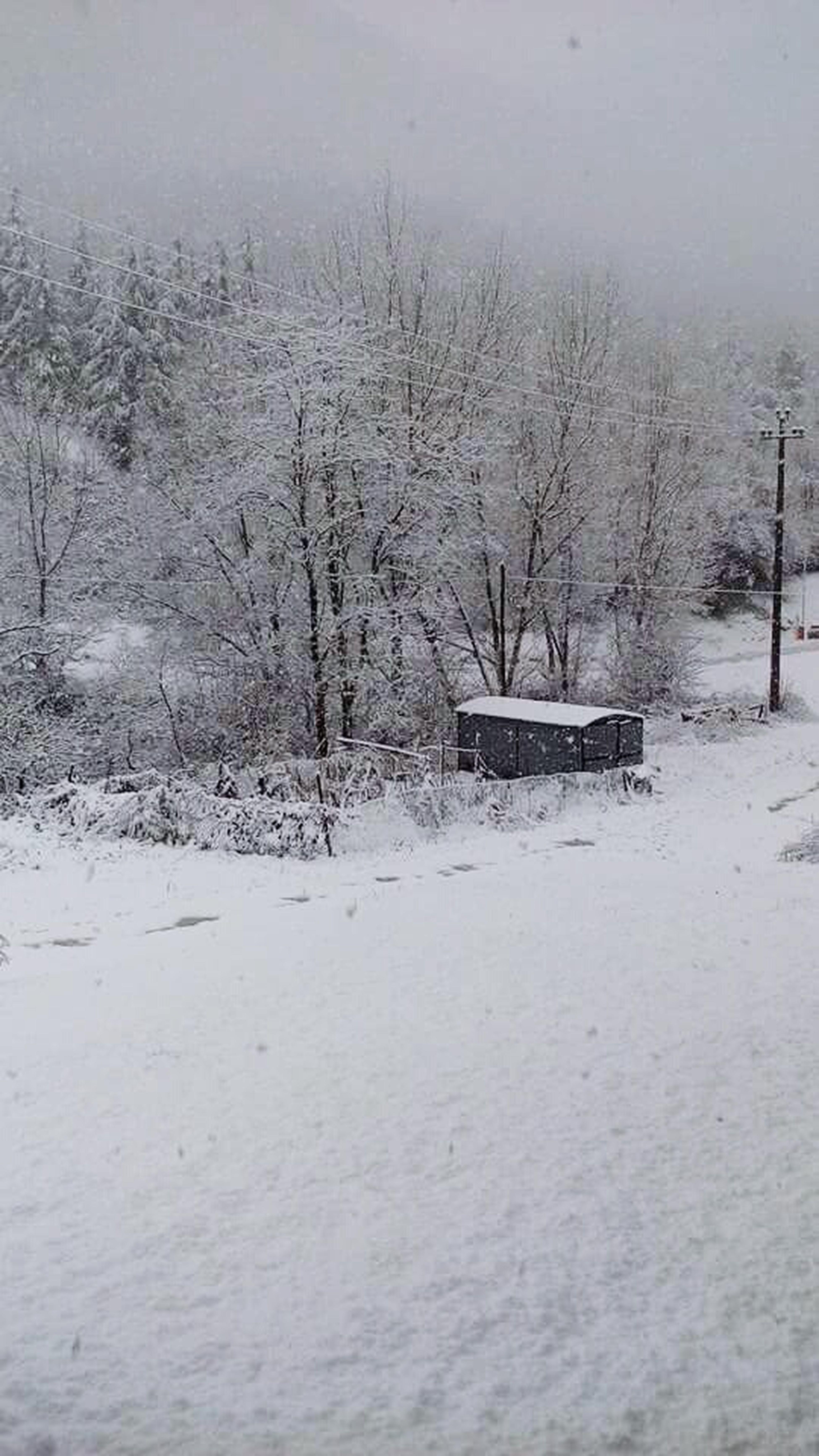 Beautiful Snow ❄ Cold Winter ❄⛄