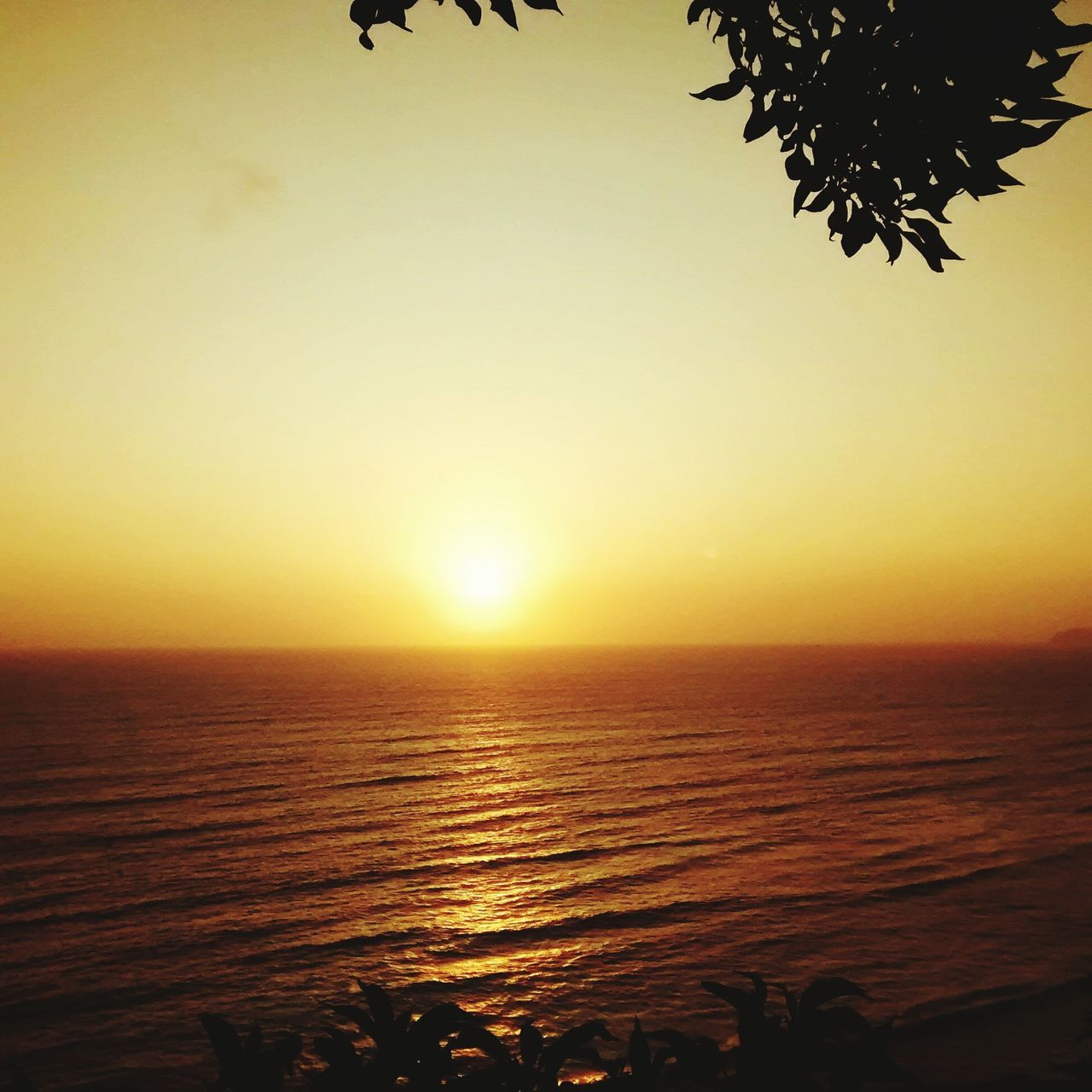 sunset, sea, beauty in nature, scenics, nature, tranquil scene, tranquility, sun, water, silhouette, horizon over water, idyllic, clear sky, outdoors, sky, beach, no people, vacations, tree, day