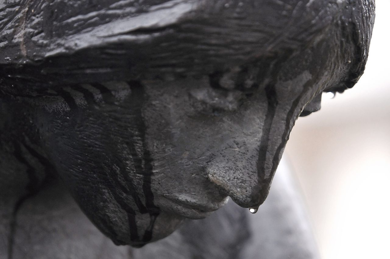 statue, close-up, sculpture, focus on foreground, no people, indoors, day, mammal