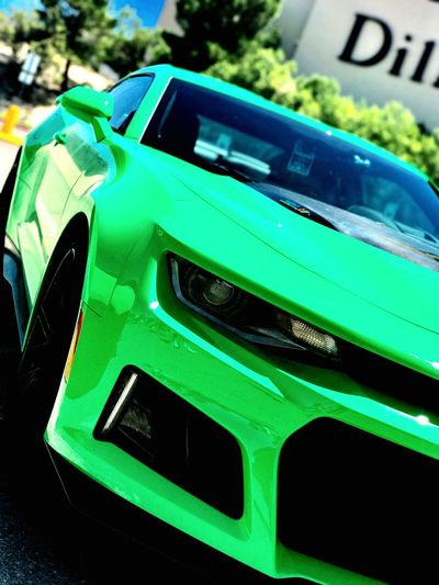 Green Color No People Outdoors Day Close-up Nature SundayFunday BombAssCarz CarShow