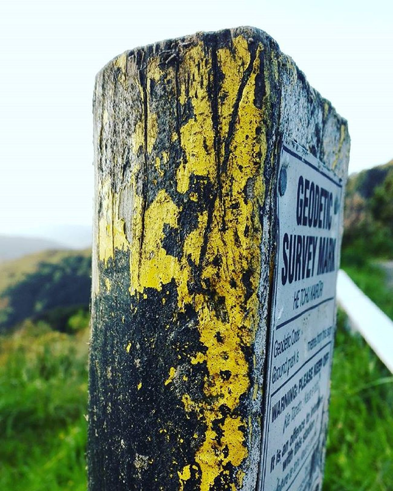 Texture Yellow Paint Post Rimutakacrossing Rimutaka Aotearoa NZ Wood Newzealand Wellington  Randomtrip 9Vaga_ColorYellow9 Wooden_hue Wooden_hue_yg Tv_typography Ig_4every1_yellow