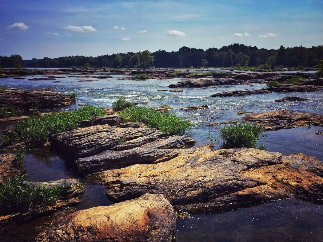 Getting out Nature EyeEm Nature Lover River Potomac River C&o Canal Summer Views Rocky Stream The Weekend On EyeEm