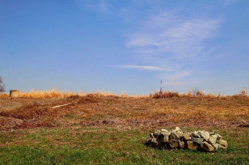 사진 대한민국 한국 Fullshot Photo Shot Day Nature Korea Picture Followme Follow F4F F Friends Canon DSLR
