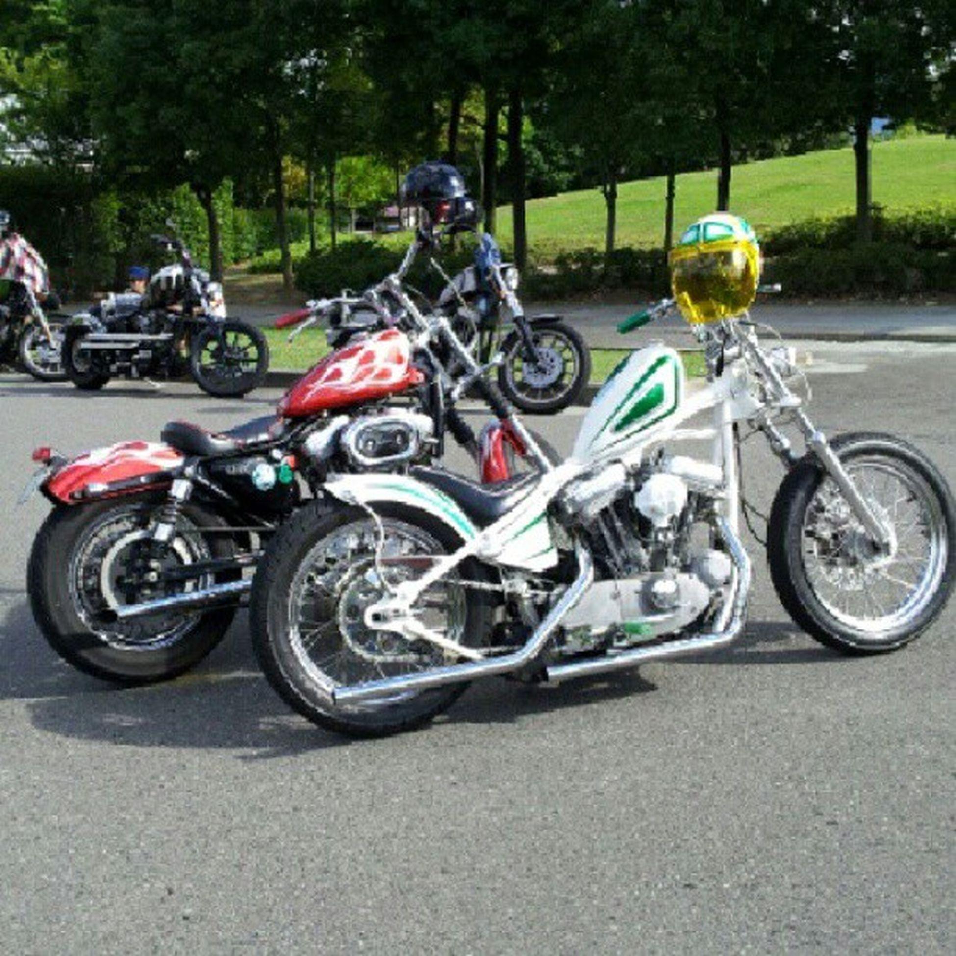 super weekend parking Harleydavidson Sportser Chopper Bobber